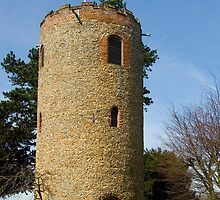 Round Tower at Church of St Andrew, Bramfield, Suffolk by Kawka