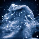 Horsehead Nebula aka The Galactic Iceberg by badbugs