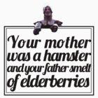Monty Python - French Taunter by Leanne Egan