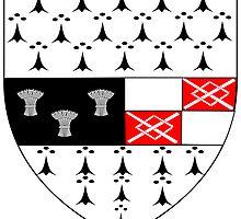 County Kilkenny Coat of Arms  by abbeyz71