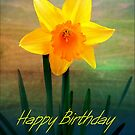 Daffodil by Forfarlass