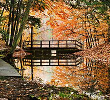 Orange Autumn Reflection Landscape by Christina Rollo