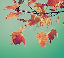 Pretty Autumn Colors 5 by ElleEmDee
