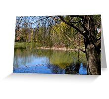Early Spring in Virginia   ^ Greeting Card