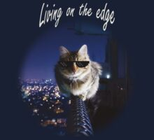 Living on the Edge - Deal with it by BobbyCorps