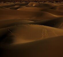 Dunes in the Sand by nat3th3gr3at