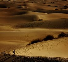 Desert Dunes by nat3th3gr3at