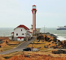 The Day Our Ship Came In by Debbie  Roberts