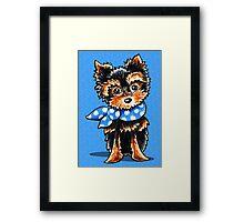 Baby Blue Yorkie Framed Print