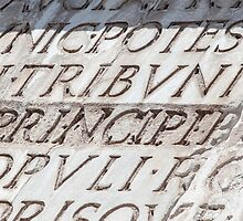Graphic carved serif type by dovelupo