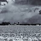 Spring Storm Clouds Over Farmland by Thomas Young