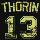 13 Thorin by PaulRoberts