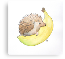 Hedgehog & Banana Canvas Print