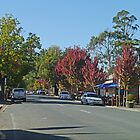 Main street through Hahndorf, South Australia by Margaret  Hyde