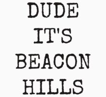 Dude, it's Beacon Hills by Caitlin Hallam
