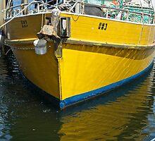 Yellow mooring- Launceston by mypic