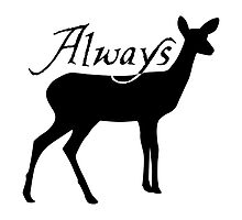 Always by shaarc