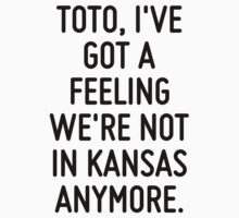 Toto, I've got a feeling we're not in Kansas anymore.  by ordinateur