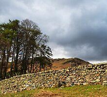 Lakeland Drystone Wall by Nick Jenkins