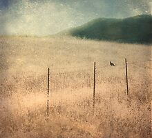 Bird On A Wire by Honey Malek