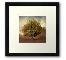 Whimsical Tree Framed Print
