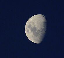 Antarctic Moon by Karen Stackpole