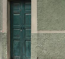 Green Wooden Door in a Wall by rhamm