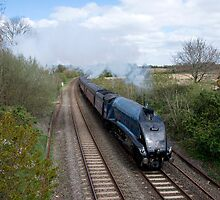Sir Nigel Gresley at Willand by Rob Hawkins