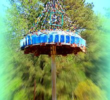 Lucama Whirligig 1 by Cecilia Carr