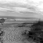 Pawleys Island Beach by imagetj