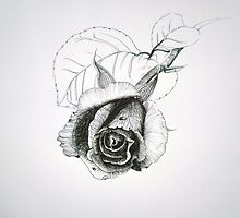 Black and white drawing of a rose by kellyjones00