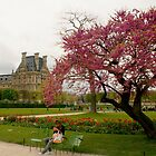 Springtime at the Tuileries Garden, Paris by Michael Matthews