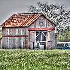 Springtime Barn by venny