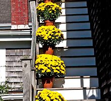 Mums On The Stairs...Dad's Inside by phil decocco