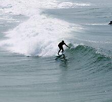 Surfs up dude! by jjastren