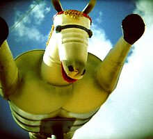 flying horse 3 by HelenAmyes