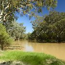 Culgoa River by Terry Everson