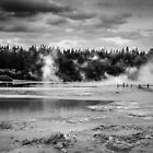 Rotorua - NZ by Christine  Wilson Photography