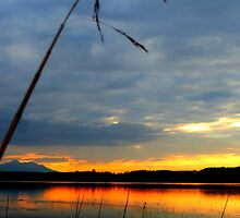 Bannwaldsee Sunset by ©The Creative  Minds