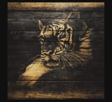 Tiger Face on Wooden by Nhan Ngo