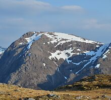 Top of the Buchaille by Pete Johnston