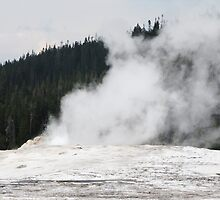 Old Faithful, Yellowstone National Park by Taryn Halterman