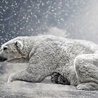the polar bear by Jo-PinX