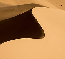 Sand by Chad Dutson