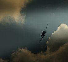 Photographic Reconnaissance Spitfire PR Mk XIX  by larry flewers