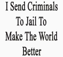 I Send Criminals To Jail To Make The World Better  by supernova23