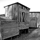 Old China Camp Buildings by Scott Johnson