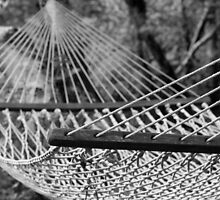 Hammock by Denice Breaux