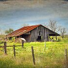 Old Barn by venny