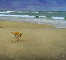 Feeling the sand by rentedochan